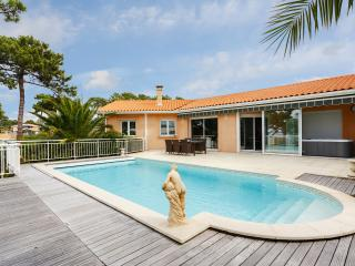 Villa with a view of the Banc d'Arguin - Pyla-sur-Mer vacation rentals