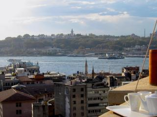 spacious and elegant, in the heart of galata - Istanbul vacation rentals