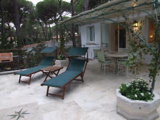 Apartment with terrace near the beach, iris - Marina di Castagneto Carducci vacation rentals