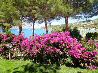 villa in riva al mare - cala girgolu - sardegna - San Teodoro vacation rentals