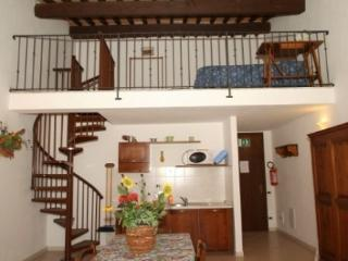 Pomaia country house - carlo G - Pomaia vacation rentals