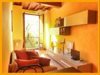 Historical centre - Romantic stay in Florence - Florence vacation rentals