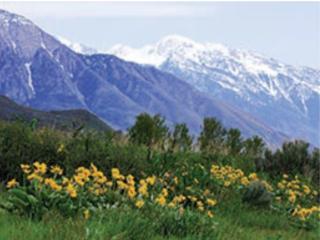 Park City Utah Wyndham - Park City vacation rentals