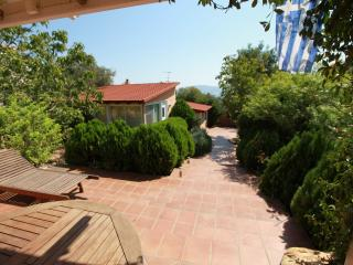 Beautiful Villa with Internet Access and Dishwasher - Sounio vacation rentals