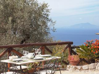 Villa Tulipano, Peaceful hillside villa - Massa Lubrense vacation rentals