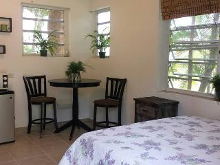 Cozy 1 bedroom House in Rincon - Rincon vacation rentals
