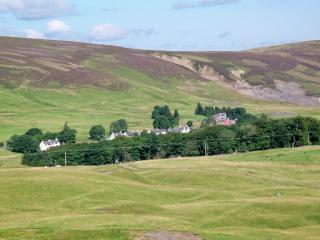Perfect Cottage with Internet Access and Dishwasher - Leadhills vacation rentals