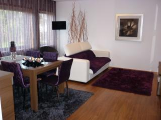 FeelCoimbra - Apartment Purple - Coimbra vacation rentals