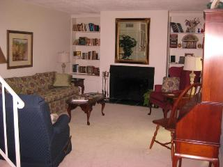 Centrally located 2-Bedrm condo in South Lexington - Lexington vacation rentals