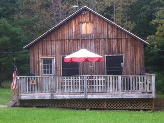 Country Cabin with private Lake access - Catskills vacation rentals