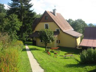 Cozy 3 bedroom Guest house in Benecko with Internet Access - Benecko vacation rentals