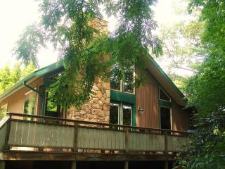 Nice Chalet with Deck and Internet Access - Confluence vacation rentals