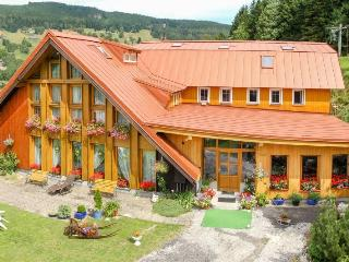 Beautiful Guest house with Internet Access and Central Heating - Pec pod Snezkou vacation rentals