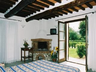 Pomaia country house - carlo V - Pomaia vacation rentals