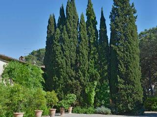 Comfortable Villa with Internet Access and Washing Machine - Pescia Romana vacation rentals