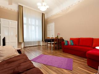 New downtown 2 bedrooms sweet home - Budapest vacation rentals