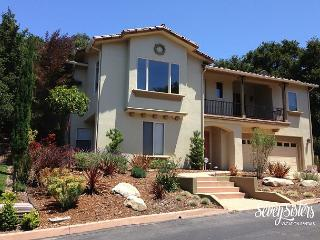 Villa In The Trees * Avila Beach * 3 BDRM Sleeps 6 * MONTHLY - Grover Beach vacation rentals