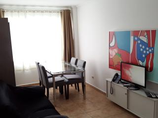 Great location & view, Air/C, Wi-Fi, TV HD, Phone! - Buenos Aires vacation rentals