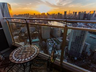 Tokyo Tower, Mr Fuji Ginza view 4 - Tokyo vacation rentals