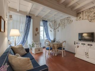 Cuori di Maggio /Just renovate romantic apartment in the heart of Florence - Florence vacation rentals