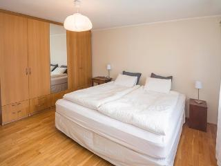 Pearl Apartment - Reykjavik vacation rentals