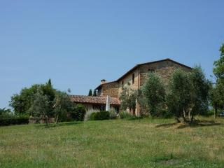 Farmhouse sleeps 6 + 2 w/pool amidst vineyards - San Gusme vacation rentals