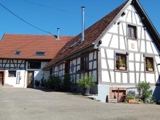 chambres d'hôtes la Bouill'Hôte - Bas-Rhin vacation rentals