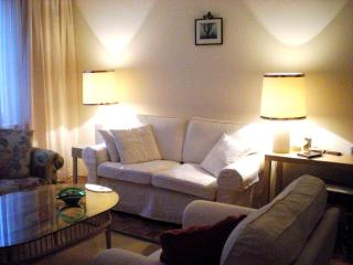 comfortable apartment in 1st district - Vienna vacation rentals