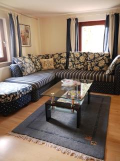 Lovely 1 bedroom Eitorf Apartment with Internet Access - Eitorf vacation rentals
