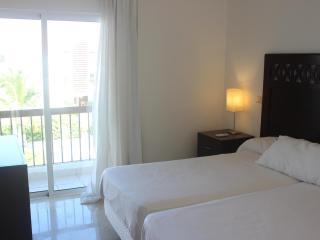 EXCLUSIVO APARTAMENTO 2 MASTER ROOMS +JACUZZI +PISCINA - Bavaro vacation rentals