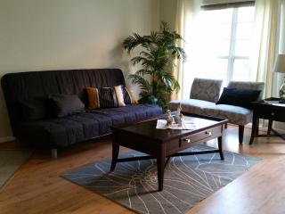 Family friendly townhouse close to DC - Alexandria vacation rentals