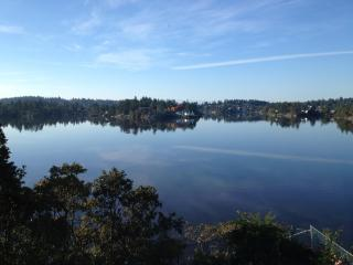 New eco home on waterfront in beautiful Victoria - Victoria vacation rentals