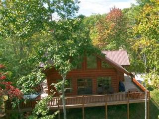 Moonstruck ~ RA47302 - Smoky Mountains vacation rentals
