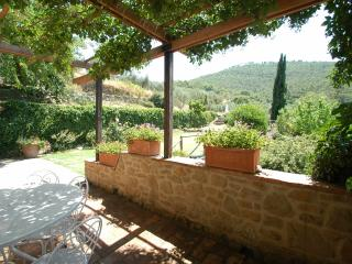 Villa Oleandro-charming rental in typical hamlet - Cortona vacation rentals