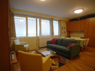 G14229 - Apartment - Rue Baillou 75014 PARIS - Paris vacation rentals