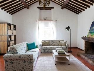 Il Visconte - Rome vacation rentals