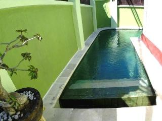 House for rent with swimming pool - Nusa Dua Peninsula vacation rentals