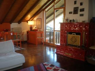 3 bedroom Penthouse with Central Heating in San Martino Di Castrozza - San Martino Di Castrozza vacation rentals