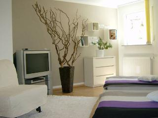 Nice Apartment with Internet Access and Satellite Or Cable TV - Bondorf vacation rentals