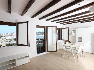 Vistas Puerto y playa Concha - San Sebastian - Donostia vacation rentals