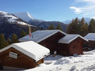 Convenient Chalet with Deck and Long Term Rentals Allowed in Bellwald - Bellwald vacation rentals