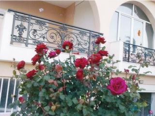 Sellia Christinas apartment - Plakias vacation rentals