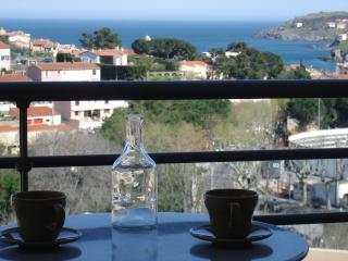 Nice Condo with Internet Access and Dishwasher - Collioure vacation rentals