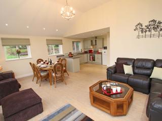 The Piggery, Rowlands Gill, Newcastle - Rowlands Gill vacation rentals