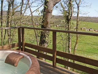 Nice Tree house with Internet Access and Central Heating - Mirande vacation rentals