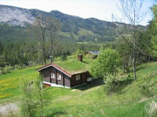 Beautiful 3 bedroom Lodge in Dalen - Dalen vacation rentals