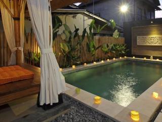Budget 2BDR Private Pool Villa near Ubud - Ubud vacation rentals