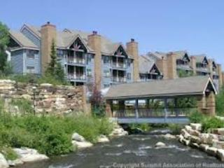 Ski In 5 Min To Main, 2ba 1 Bedroom , Parking! - Breckenridge vacation rentals