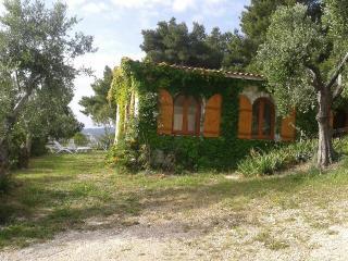 villa 1 - Vieste vacation rentals