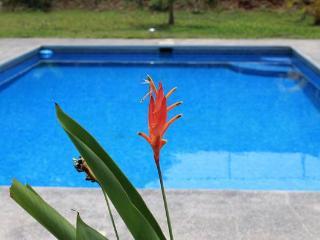 Costa Rica Vacation Rental - Puntarenas vacation rentals